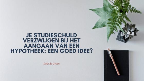 Risico's van je studieschuld verzwijgen